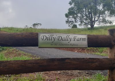 Dilly Dally Farm
